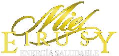 eirusy-logo
