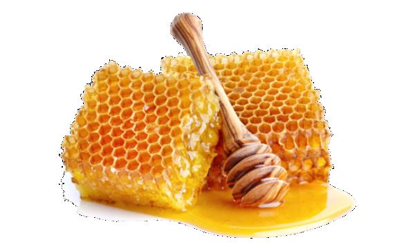 productos-de-miel